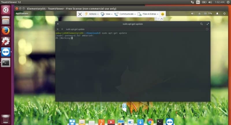 Linux TeamViewer elementary OS